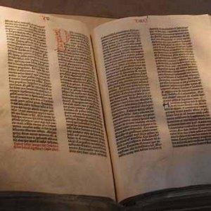 Biblical Studies  (OT + NT)